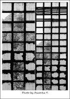04-prozori