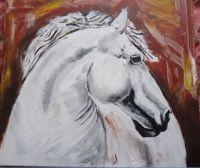 konj-5
