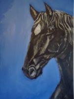 konjski