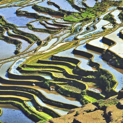 "Samostalna izložba fotografija Božidara Kasala ""Yunnan - grafika rižinih polja"""